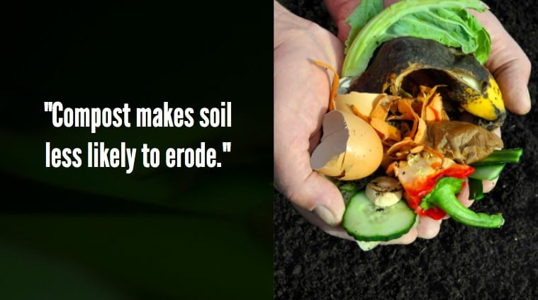 Add compost to soil