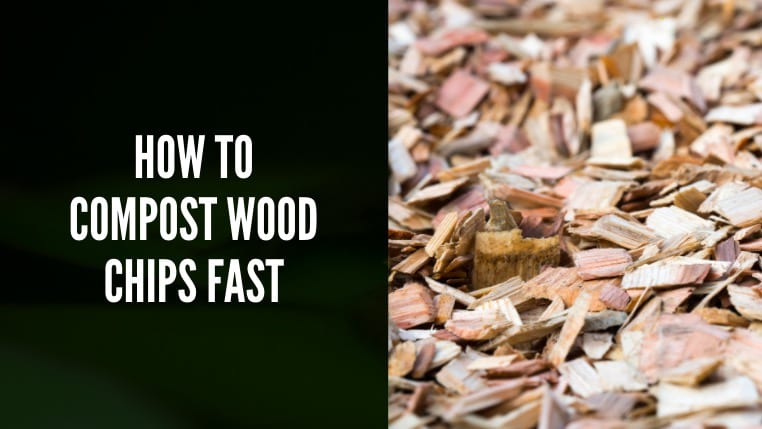 How to Compost Wood Chips Fast