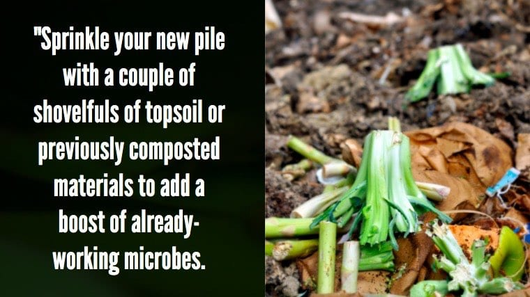 Add to new compost pile