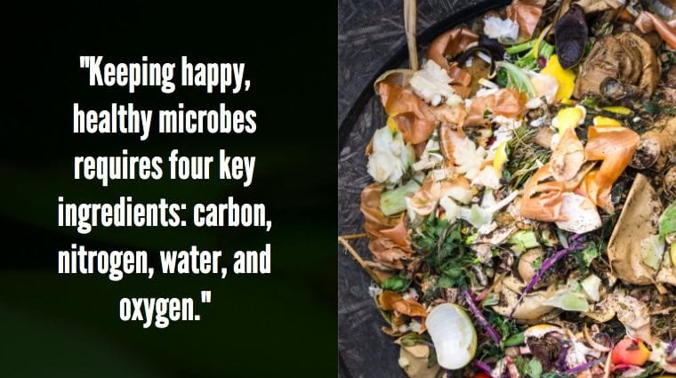 Composting microbes
