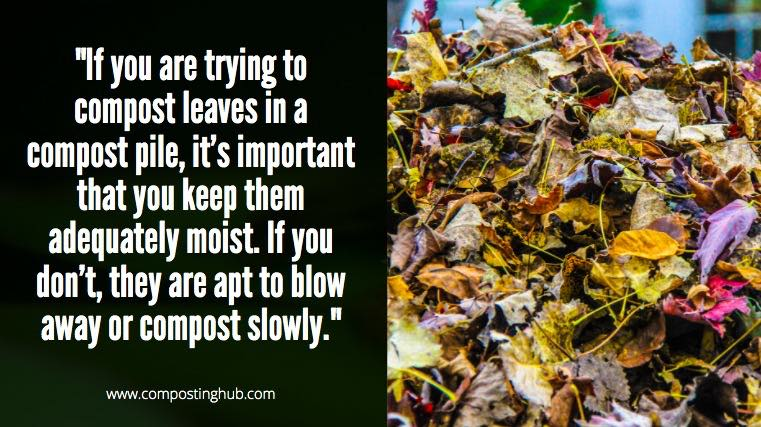 Compost leaves in a pile
