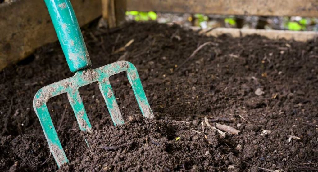 Compost Vs. Topsoil For New Lawn