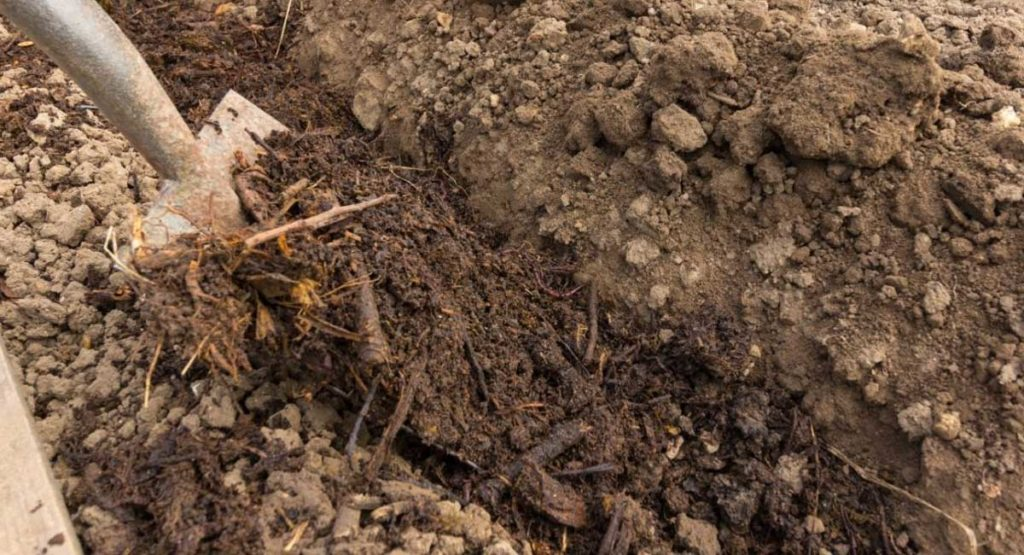 Trench Composting Clay Soil